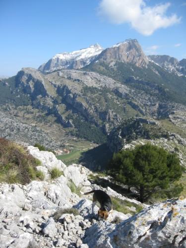 Mit Om auf dem Puig de sa Bassa.JPG