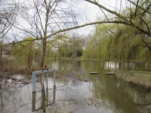Überschwemmter Teichzugang.JPG