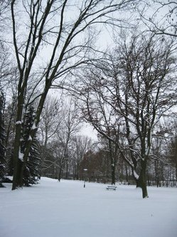 Vorschaubild für Stadtpark.jpg