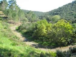 Vale de Coelhos.JPG