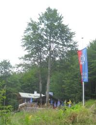 Grünsteinhütte.JPG