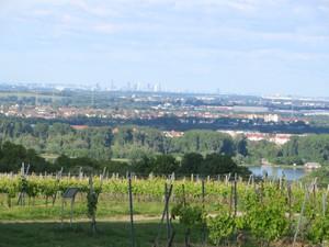 Blick über Mainz bis nach Frankfurt.JPG