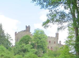 Burg Reichenstein.JPG