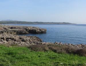 Entlang der Küste.JPG