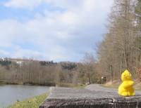 Osterhase auf der Bank vor Bad Berka.JPG
