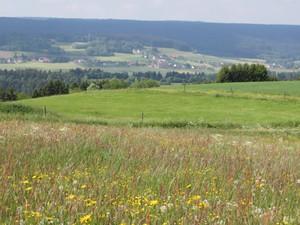 Göschweiler-Panorama.JPG