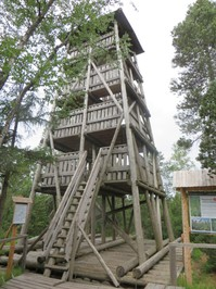 12 Turm im Hochmoor.JPG