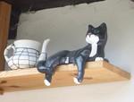 7 Katze.JPG