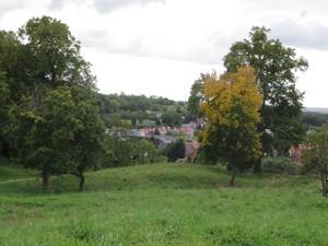 Blick vom Burgberg.JPG