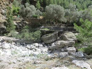 Samaria Dorf.JPG