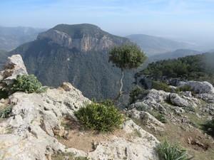 Gipfel Puig Alaro.JPG