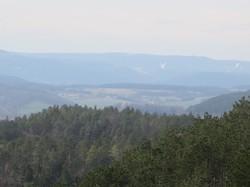 Thüringer Wald.JPG
