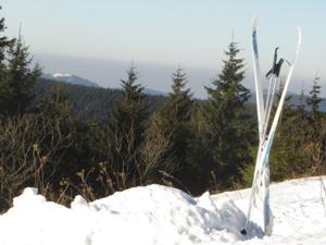 Auf dem Schneekopf-Gipfel .JPG