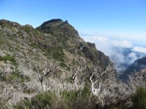Durch die Felsenwelt Madeiras 7.JPG
