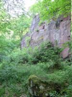 Felsentor bei Neustadt im Harz.JPG