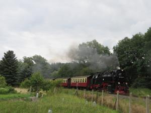 Selketalbahn 1.JPG