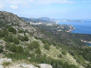Blick vom Torre Richtung Cala Rajada.JPG