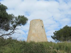 Torre Canyamel 2.JPG