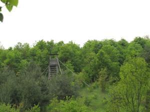 Austiegsroute durch den Wald.JPG