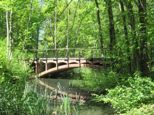 Brücke im Martinipark.JPG