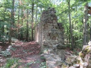 Ruine Rabenswald.JPG