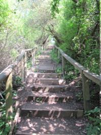Treppe zum Strand.JPG