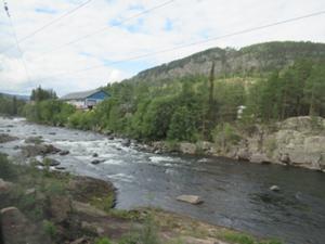 Fahrt mit Bergenbahn nach Oslo 2.JPG