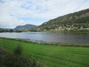 Fahrt mit Bergenbahn nach Oslo.JPG