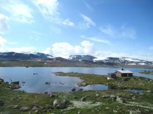 Hardangervidda 1.JPG