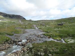 Hardangervidda 4.JPG