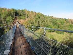 Hängeseilbrücke Hohe Schrecke 3.JPG