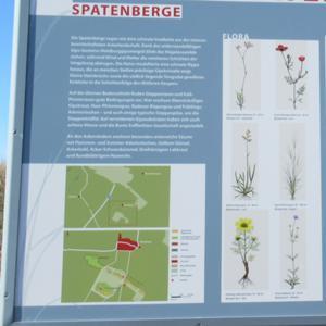 Erklär-Tafel Spatenberg 3.JPG